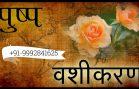 Flower Vashikaran mantra for Husband Vashikaran